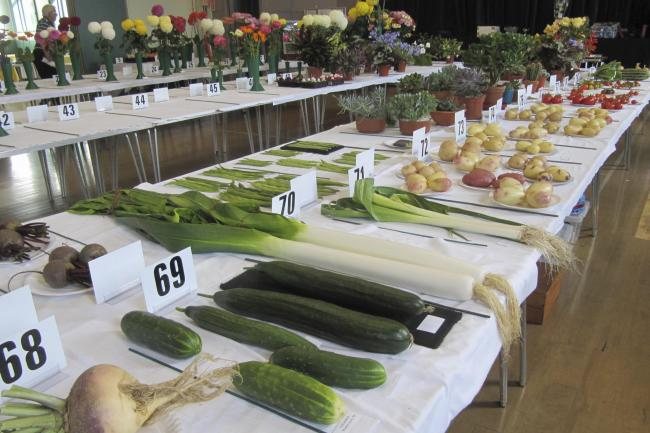Vegetable exhibits on show at the Tottington and District Horticultural Society September Show 2019