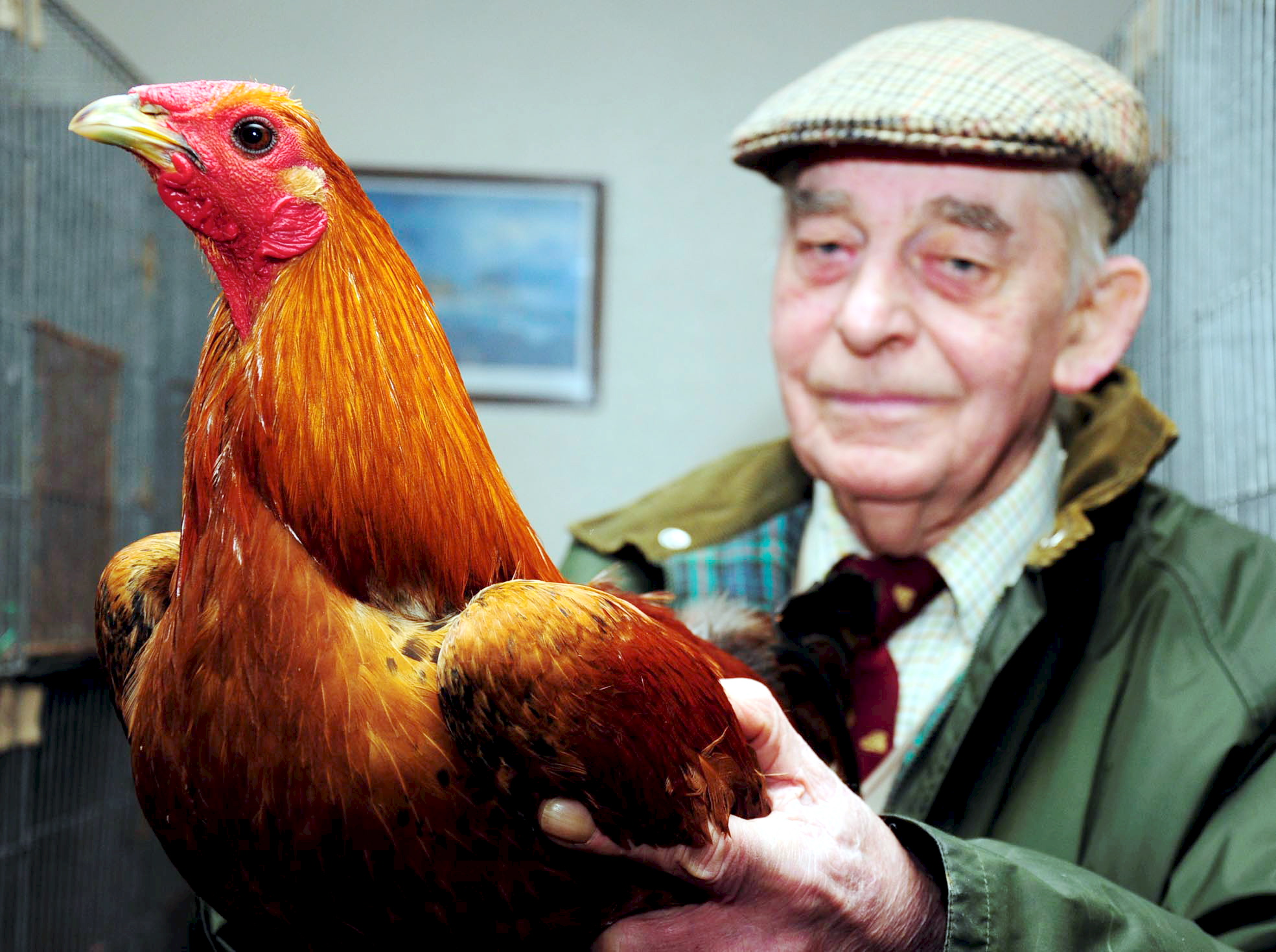 Bob Kane, from the Wirral, with his ginger bird