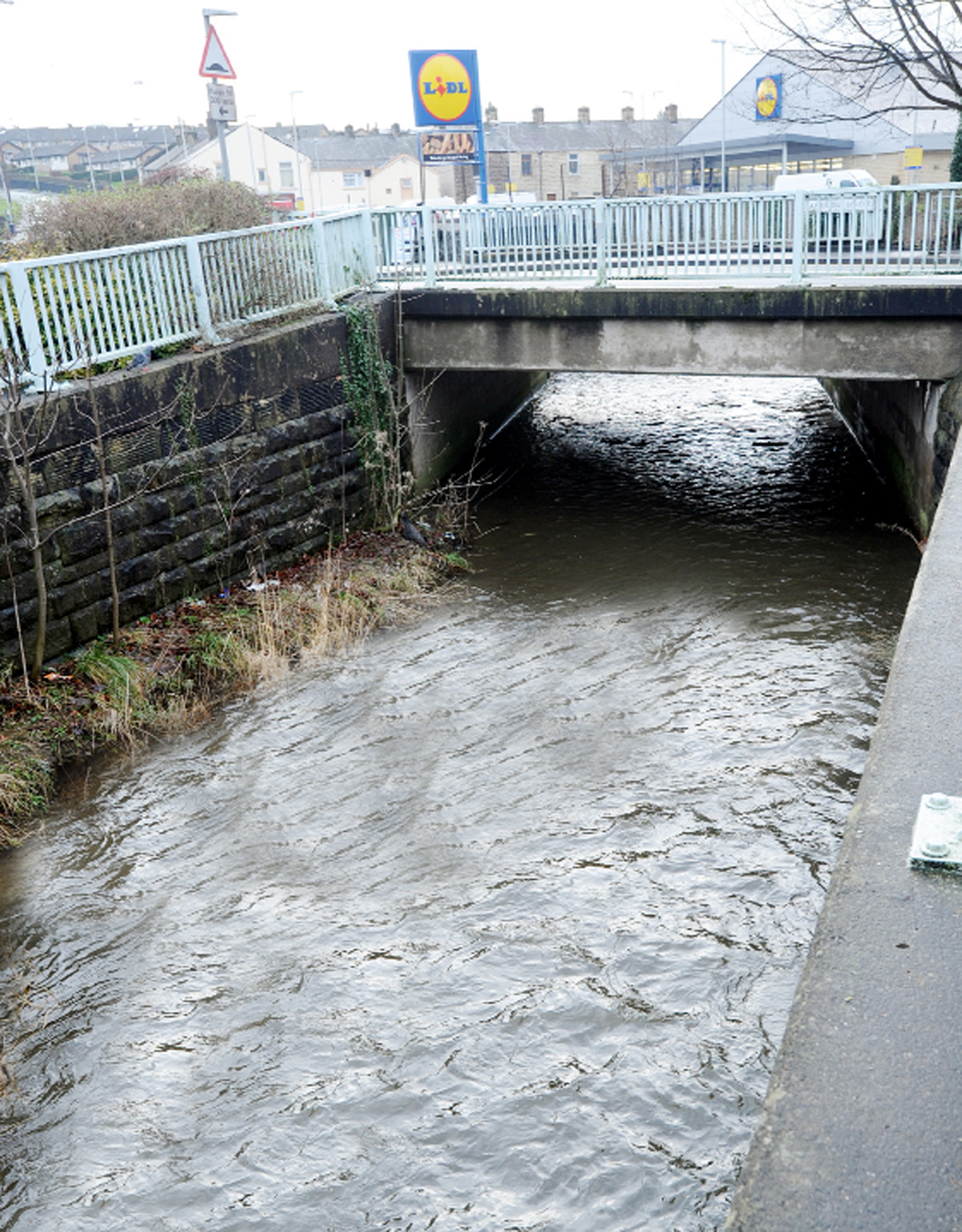 Terrier thrown from bridge in Clitheroe