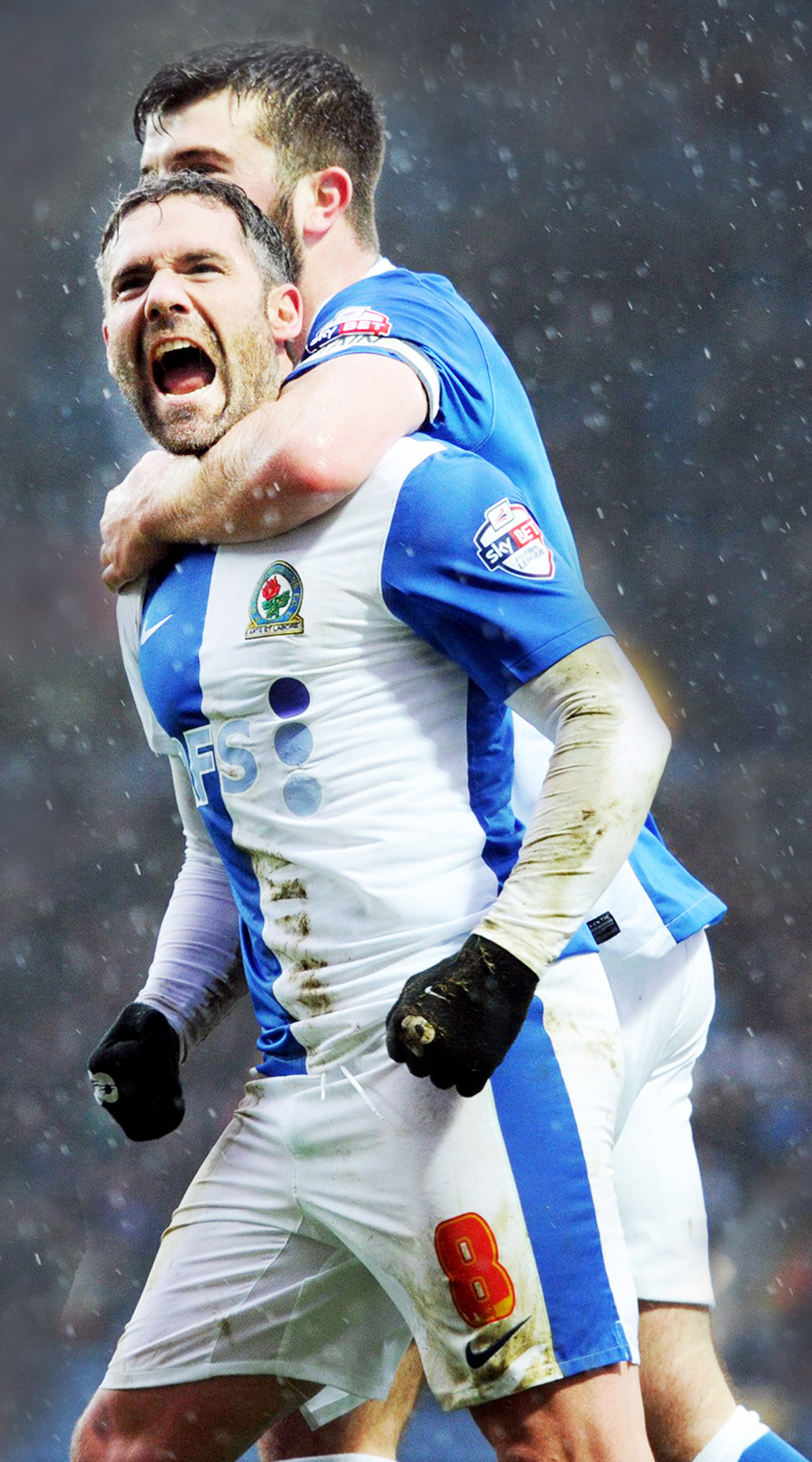 David Dunn is out of contract at Blackburn Rovers