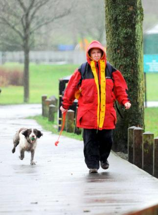 A dog walker braves the rain in Moss Bank Park