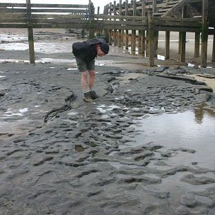 Earliest UK human footprints found