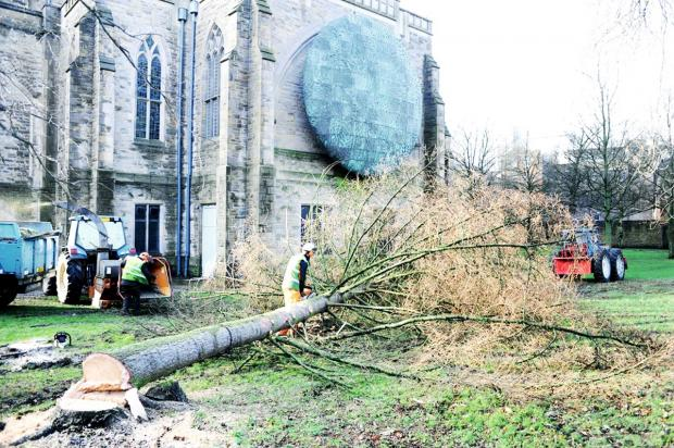 Blackburn Cathedral Quarter tree felling angers residents