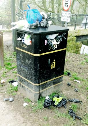A bin like this overflowing with dog waste packets is making responsible owners angry, and making them call for action to be taken to empty the bins