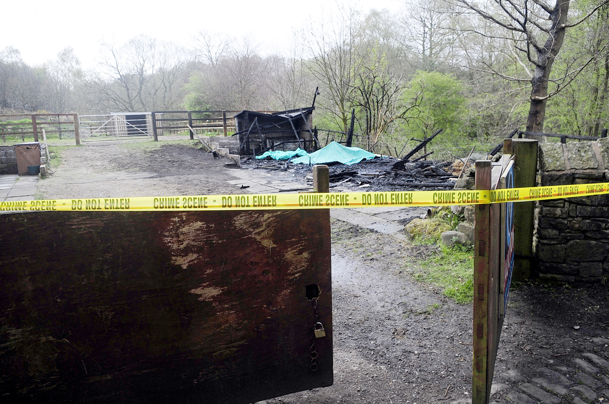 UPDATED: Horses killed in stable arson attack
