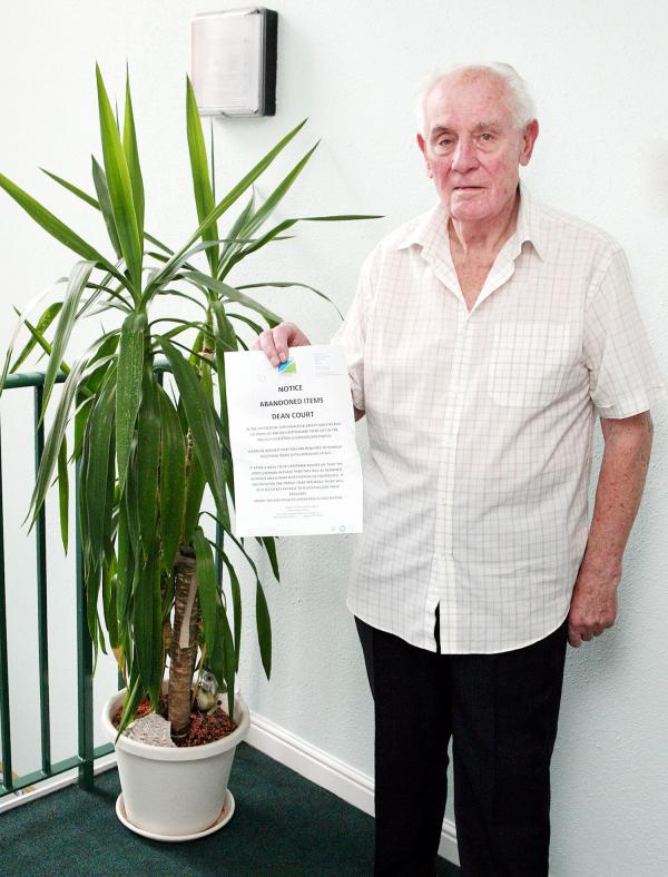 Yucca plant banned 'because it's a health and safety risk'